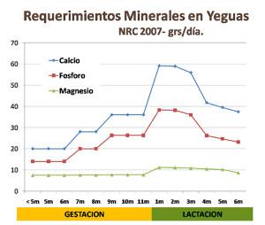 requerimientos-minerales-yeguas-supeq